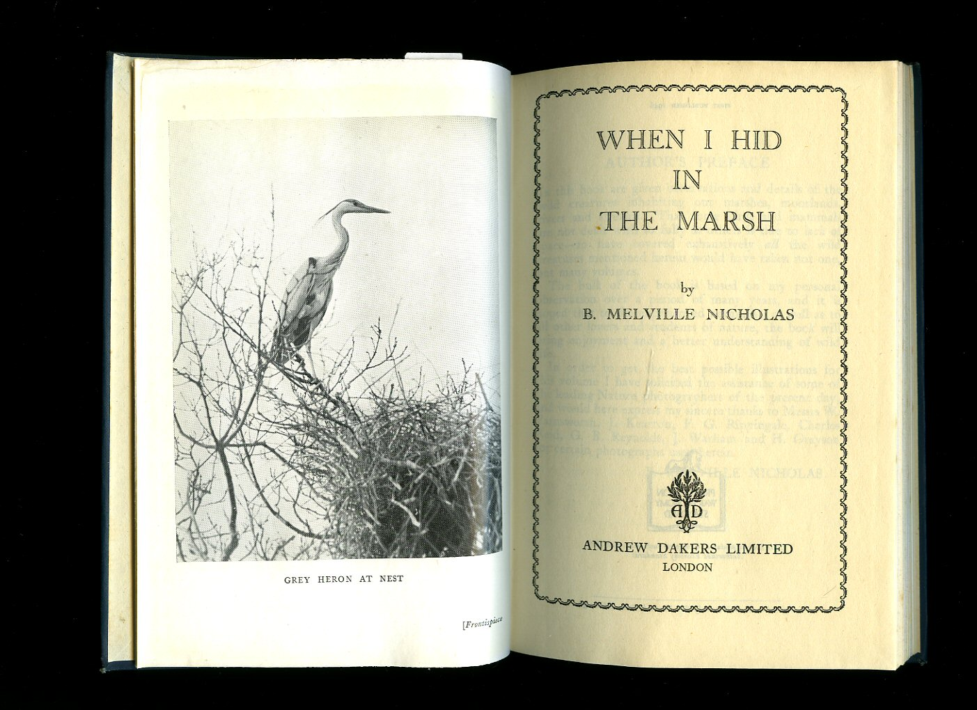 NICHOLAS, B. MELVILLE - When I Hid in the Marsh